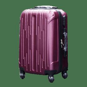 SG Suitcase Medium Size