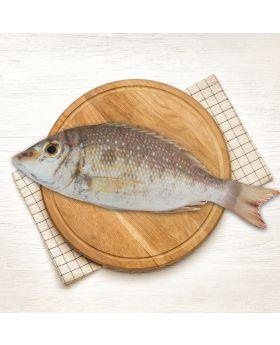 Emperor Fish 2 KG  ملہ
