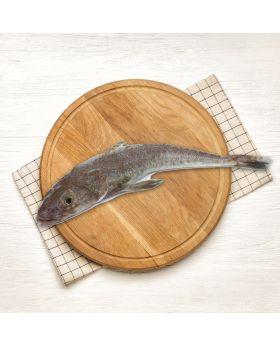 Flathead Fish 2 KG