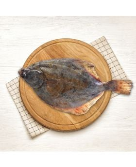 Halibut Fish 2 KG حجام