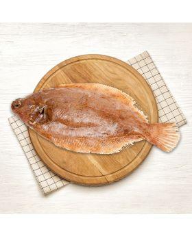 Lemon Sole Fish 2 KG  گول سول