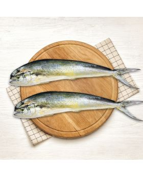 Mahi Mahi Fish 2 KG  المشک