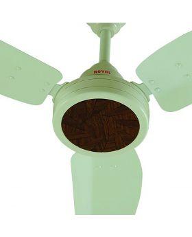Royal Regal Ceiling Fan