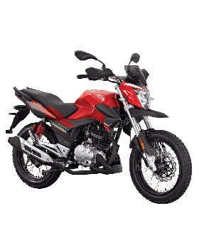 Road Prince Robinson 150CC Motorcycle Without Registration