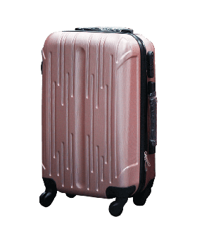 SG Suitcase Large Size-Silver