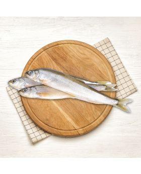 Sillago Fish 2 KG  لیڈی فش