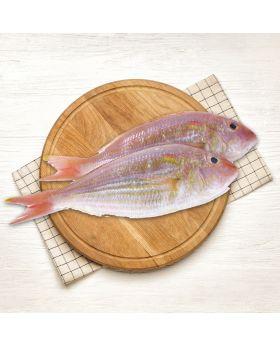 Threadfin Beam Fish 2 KG چکوری
